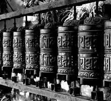 Prayer Wheel by Betsy  Seeton