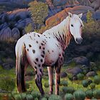 """High Desert Mare"" by Charles  Wallis"