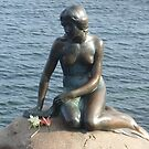 The Little Mermaid Statue - Copenhagen Harbour by waynebolton