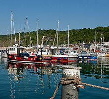 Summer Morning ~ Lyme Regis Harbour by Susie Peek