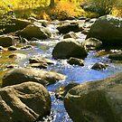 """""""Mountain Stream"""" by Lynn Bawden"""