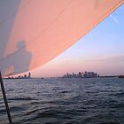 Sailing in NY Harbor by chipster