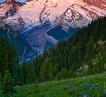 Rainier Dawn by RavenFalls