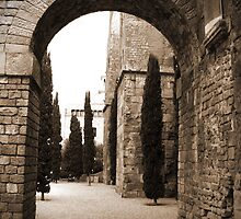 Barcelona Cathedral Arch by Kris McLennan