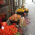 Zurich Florist by Kris McLennan