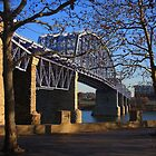 Purple People Bridge - Cincinnati Ohio by Tony Wilder