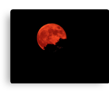 The night of the warlock  Canvas Print