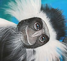 Colobus Monkey -  'Jungle Animals'  by Selinah Bull