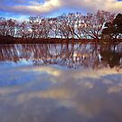 """Reflections at Evandale"" by Husky"