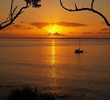 Sunrise At Husskison - NSW - Australia by shortshooter-Al