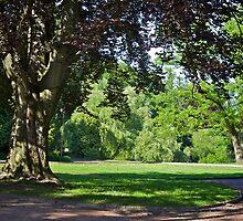 Park in L'viv, Ukraine by Anastasiya Smirnova