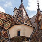 Hospice de Beaune, Hotel-Dieu by Robert Kelch, M.D.