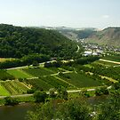 Mosel by wistine