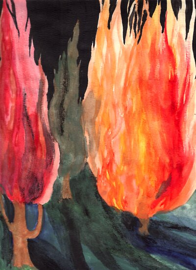 Fire Trees by Rebecca Tripp