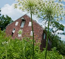 Queen Anne at Colebrook Mill by Yvonne Roberts