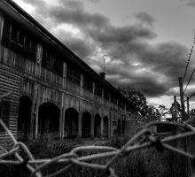 Wolston Park Mental Asylum, Brisbane by Damon Lancaster