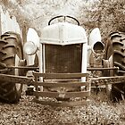 Old Tractor by RebeccaBlackman