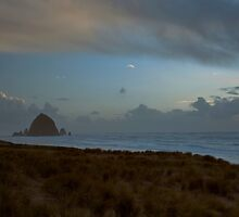 Haystack Rock by Ritchie Belleque