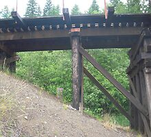 Train Trestle by BrittanyEvarose