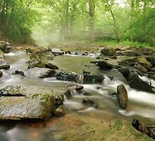 stream on a June morning by jimHphoto
