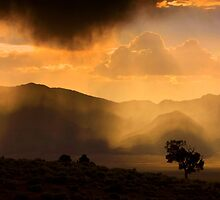 Thunder Storm Across the High Desert  by Jeanne  Nations