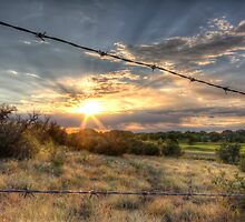 Barbed Wire Sunset by Bob Larson