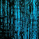 Reeds reflections by Photos - Pauline Wherrell