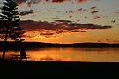 Alone at SunSet on Tuggerah Lakes by Tam  Locke