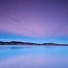 The Colours of Winter - Cornelian Bay, Hobart by Liam Byrne