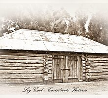 Log Gaol - Carisbrook by pennyswork