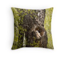 Great-Horned Owlet in Gros Ventre Campground Throw Pillow