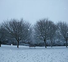 Snowy Scene, Honiton, January 2010 by k84ddesigns