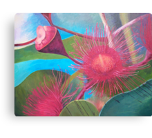 Gum Blossom - Macro view Canvas Print