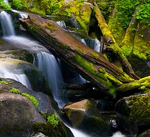 Paradise River Cascades by RavenFalls