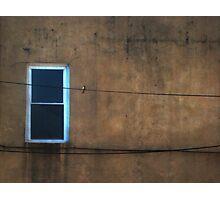one window one wire one bird  Photographic Print