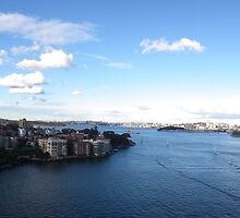 Panoram of Sydney Harbour June 2010 by Bernie Stronner