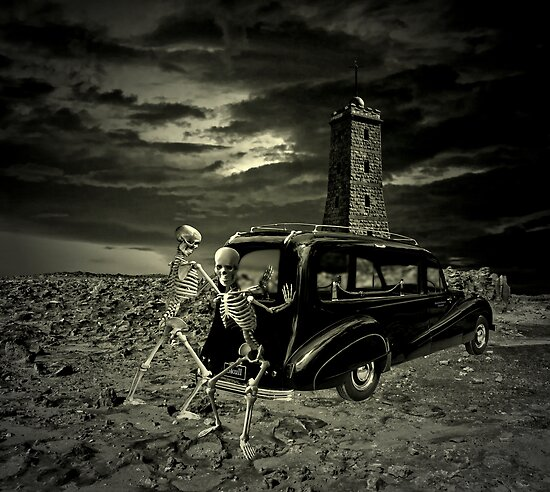 Skull & Bones Services by Steven  Agius