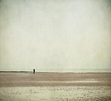 The Lone Photographer by Ursula Rodgers