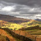 The view from Loughrigg Fell by Tom Gomez