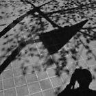 Capture the shadows by ragman