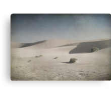 I Was Lost in the Desert Canvas Print