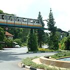 Sentosa as I loved it - Monorail over Roundabout by ellismorleyphto
