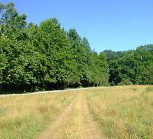 Off Road - Albemarle County, Virginia by Chris Martsolf