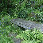 Garden bench, Dove Cottage, Grasmere by BronReid