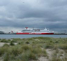 Spirit of Tasmania, Station Pier, Port Melbourne by lilleesa78