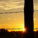 Sunrise fencepost with more color by agenttomcat