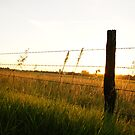 Fencepost in full color in Wakarusa by agenttomcat