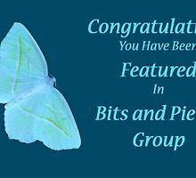 Feature Banner For Bits & Pieces by Gail Bridger