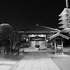 Asakusa Temple by Alan Black
