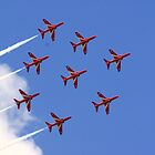 Red Arrows by Adam Robbins